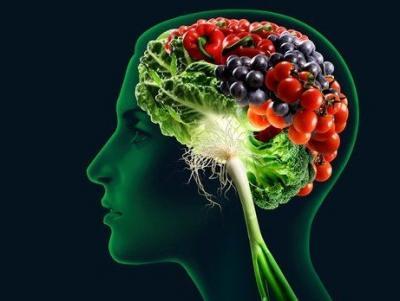 alimentacion-neuronas